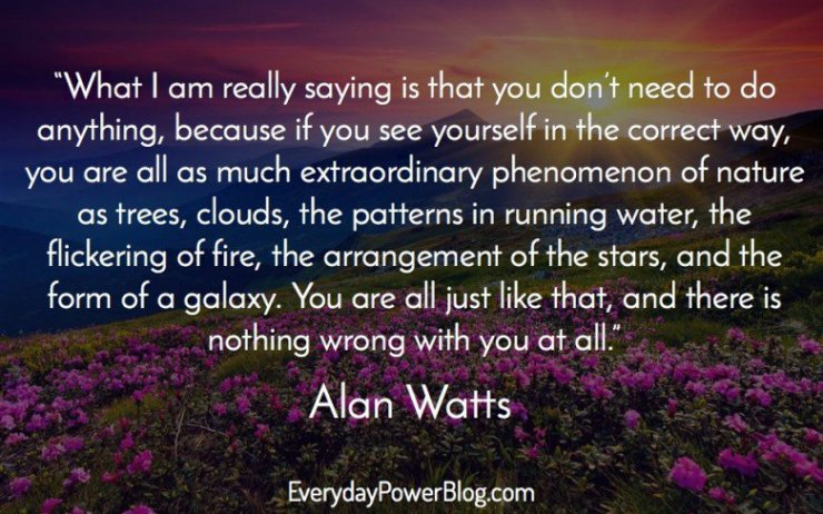 alan-watts-quotes-21-e1441164228615